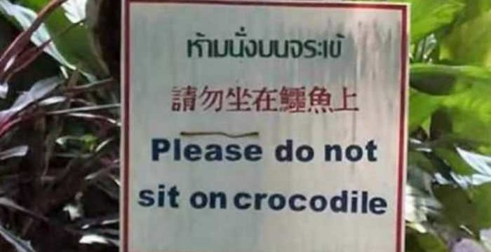 Please do not sit on crocodile.